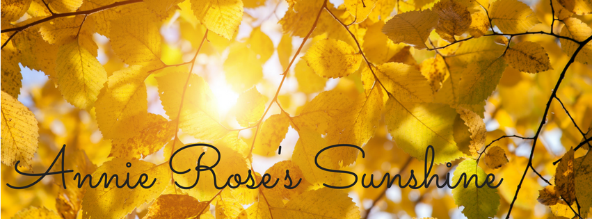 Annie Rose's Sunshine Facebook Banner